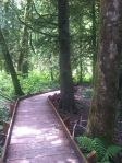 Boardwalk trail of McLane Creek Nature Trail